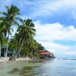 海外のエコツーリズム、エコツアー情報!コスタリカ・パナマ、オーストラリアのエコビレッジとエコロッジ