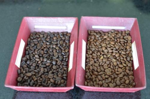 コーヒーの2種類の焙煎方法の比較