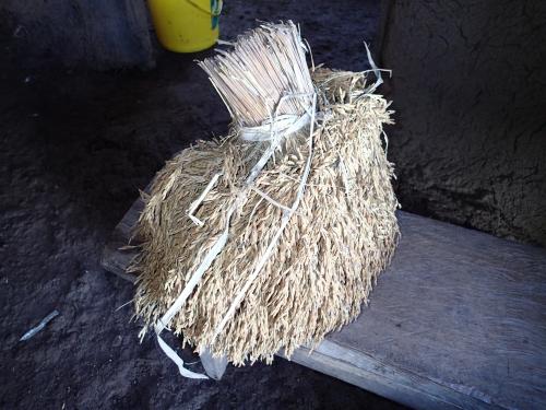 パナマの稲穂の保存の仕方