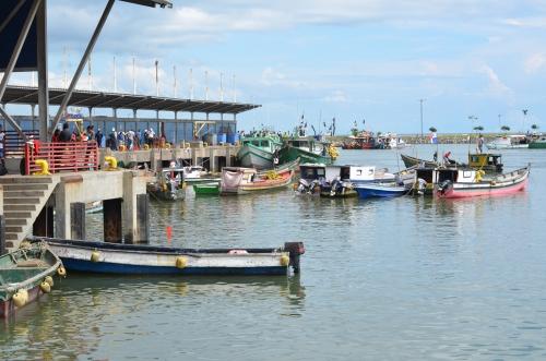 パナマシティの漁港に停泊する漁船