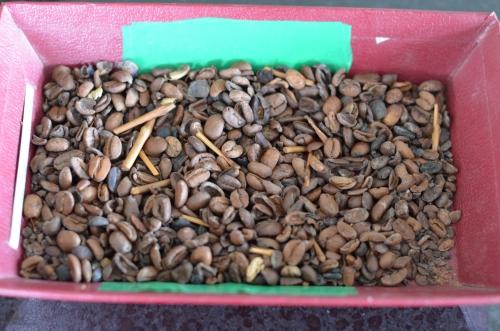 品質が悪いコーヒー豆