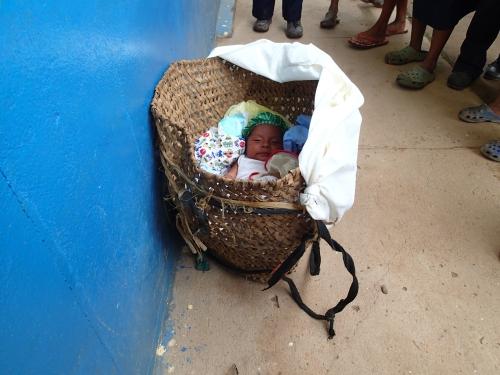 籠の中に赤ちゃん