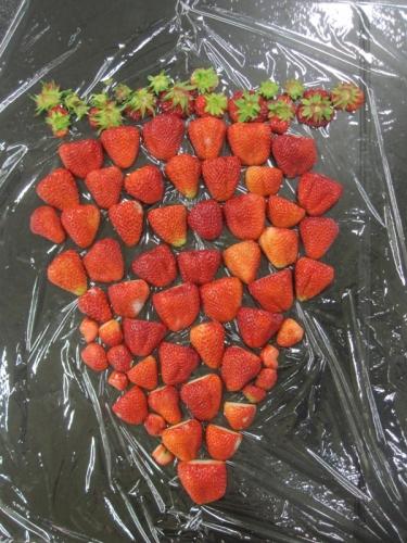 苺で出来たイチゴ