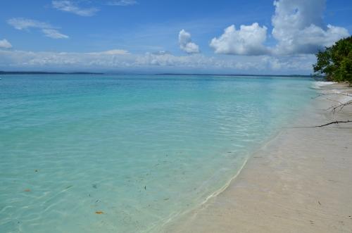 透き通ったカリブ海と砂浜
