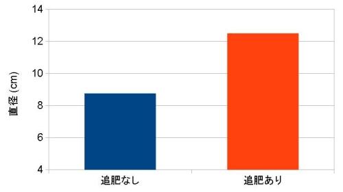 キャベツのグラフ_1521