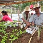 中南米パナマの無電化村での18回目の滞在フィールド調査
