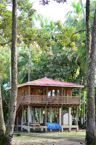 森の中に建設中の二階建てホテル