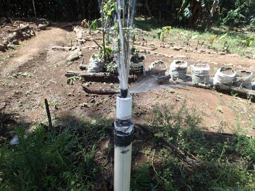 グループ農園の散水装置