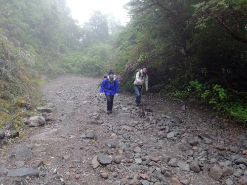 ボルカンバルー岳の登山道