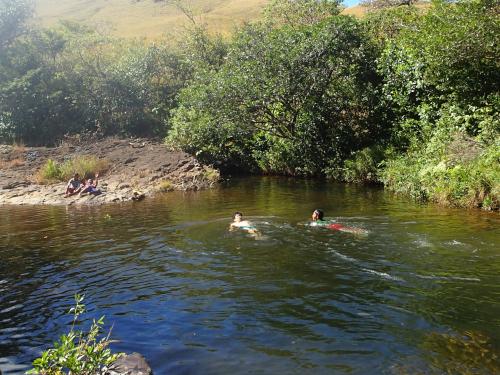 背泳ぎを教える青年海外協力隊