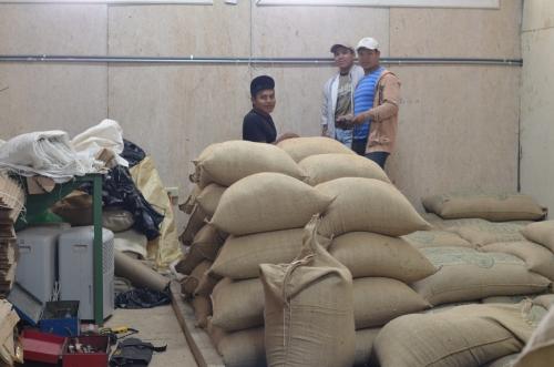 コーヒー豆の貯蔵庫で働く少数民族の職員
