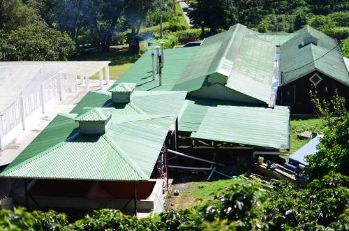 パナマのレリダ・コーヒー農園