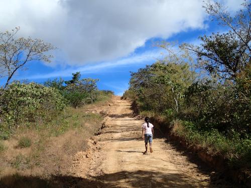 坂道を歩く子供