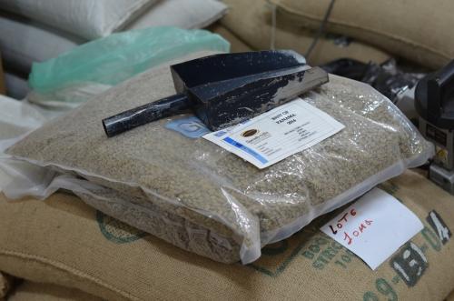 日本向けに特別にビニール梱包されたコーヒー豆