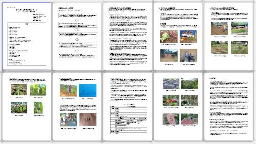 第六号農業活動レポート
