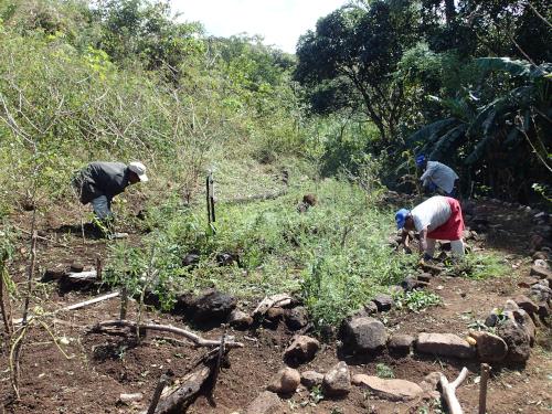草刈りする無電化集落の村人