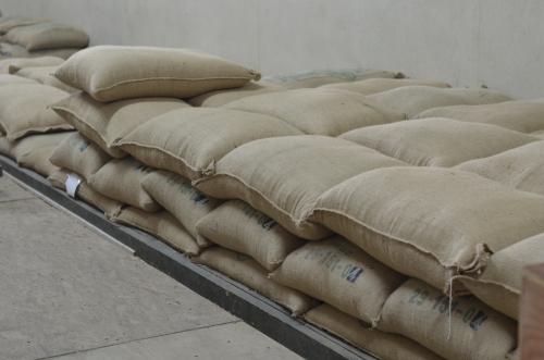 麻袋に入った輸出用のコーヒー豆