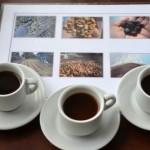 中米パナマ・ボケテ高原のルイス農園のコーヒーツアーで学んだゲイシャ品種の特徴と栽培方法、精製・焙煎技術、値段