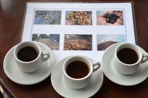 3種類の乾燥方法によるコーヒーテイスティング