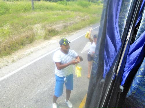 バスの外からマンゴーを売るコスタリカ人の売り子