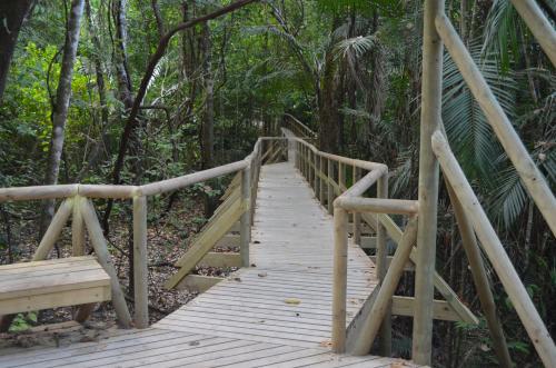 マヌエル・アントニオ国立公園の整備された遊歩道