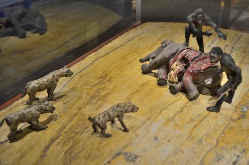 メキシコ国立人類学博物館の展示物ハイエナ