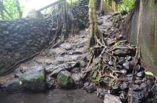 タバコン温泉の近くの川の土手