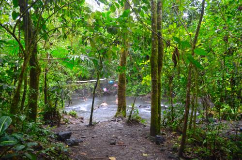 タバコン温泉の近くにある天然露店温泉の森