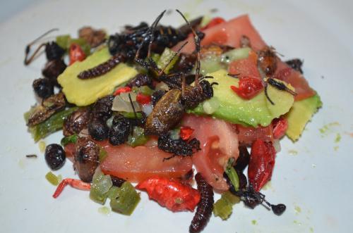 メキシコの虫のサラダ