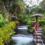 タバコン温泉の川