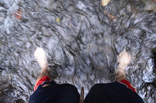 右足が冷たく、左足が温かい川