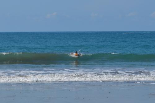 マヌエル・アントニオではサーフィンができる