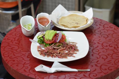 メキシコの虫食チニクイル料理