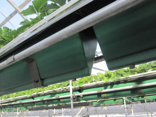 プランター型養液土耕栽培