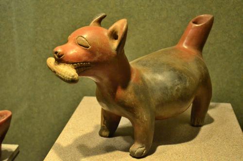 メキシコ国立人類学博物館の展示物犬