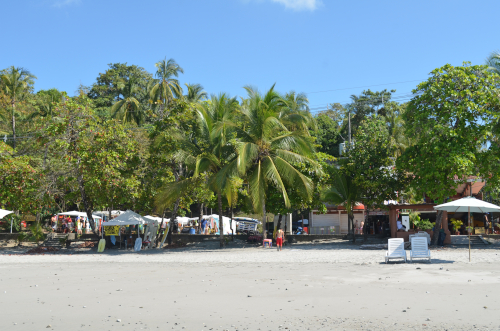 マヌエル・アントニオの無料のビーチ