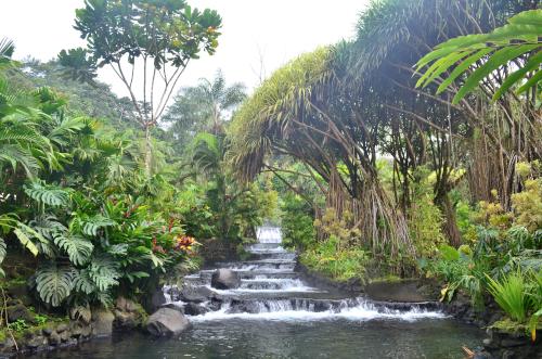 タバコン温泉の自然とお風呂