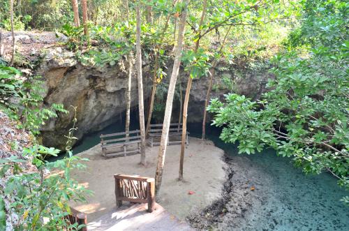 グランセノーテの2つの泉