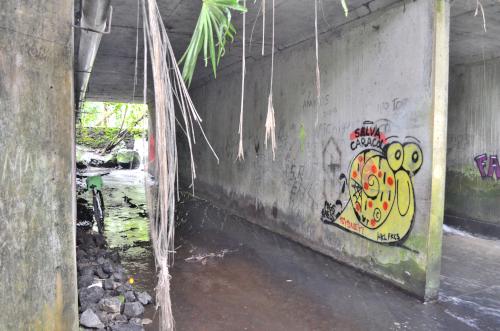 タバコン温泉の近くの橋の下