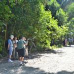 綺麗なビーチ&野生動物&森林浴が一度に楽しめる!コスタリカで最も人気があるマヌエル・アントニオ国立公園の3つの魅力