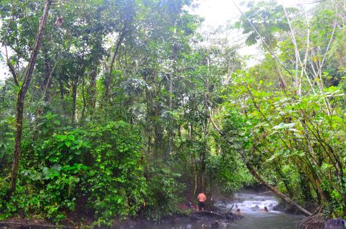 緑豊かなタバコン温泉の近くの無料入浴所