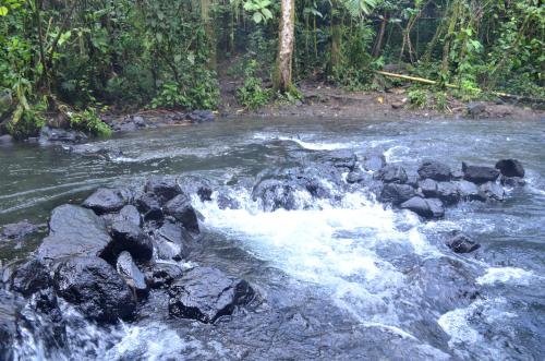 タバコン温泉の近くの自然の露天風呂