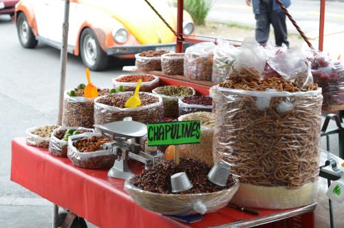 メキシコシティの路上で売っているバッタ