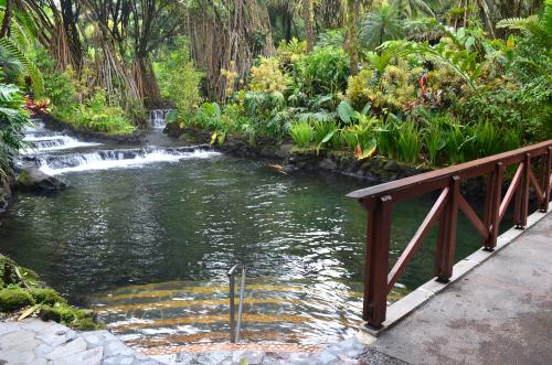 タバコン温泉の湯