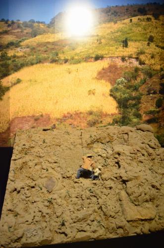 メキシコ国立人類学博物館の展示物焼き畑農業