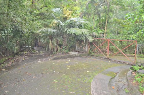 タバコン温泉から80m地点