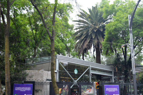 メキシコシティの美しすぎるスタバ
