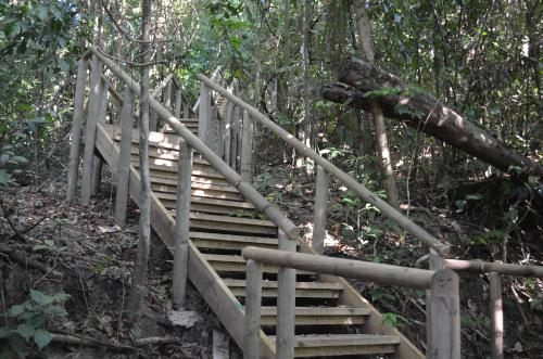 マヌエル・アントニオ国立公園の展望台までの階段