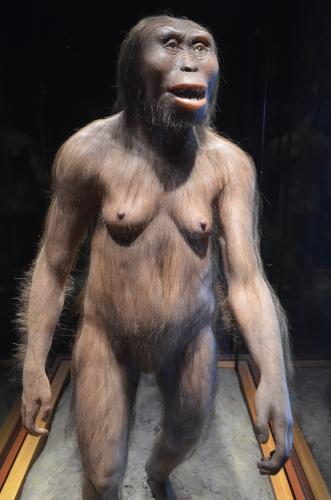メキシコ国立人類学博物館の展示物世界最古の人類