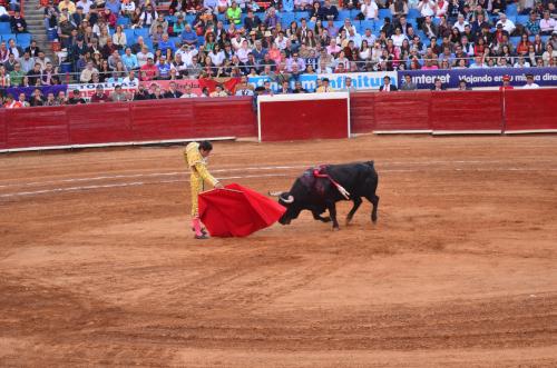 牛をヒラヒラかわす闘牛士